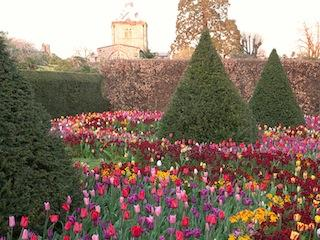 Annual Tulip Festival At Arundel Castle