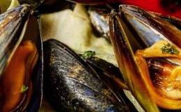 Top 5: Mussels in London